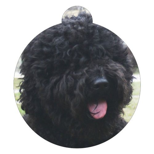 Barbet Picture ID tag
